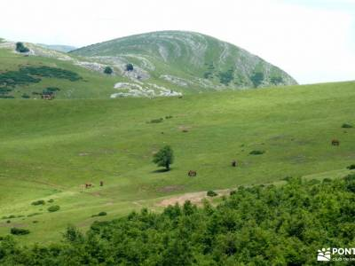 Aralar y Valle de Arakil -atención exclusiva al senderista senderismo personalizado fin de semana ro